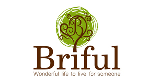 briful